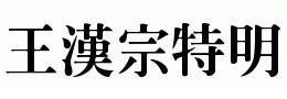 王汉宗特明体繁
